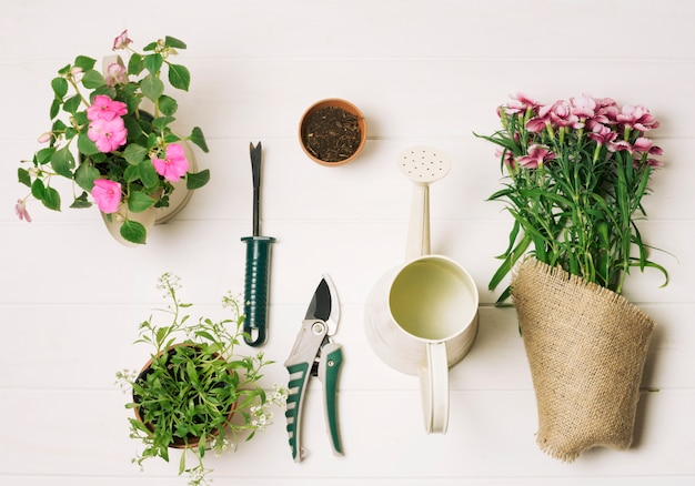 Georganiseerde samenstelling van tuinontwerp