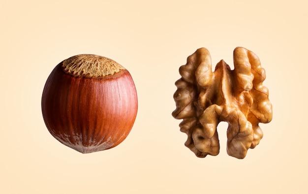 Gepelde walnoot en hazelnoot in geïsoleerde samenstelling.