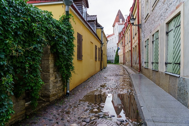 Geplaveide steegje met plassen na het regenen in tallinn, estland.