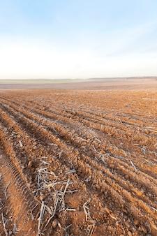 Geploegd land, vorst - gefotografeerde close-up van geploegd landbouwgebied, het land is bedekt met witte vorst.