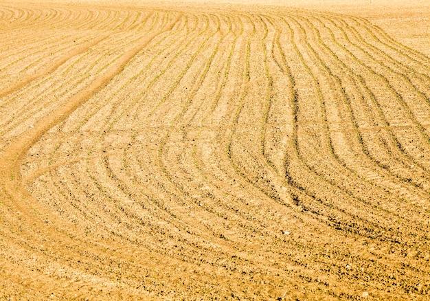 Geploegd landbouwgebied om een nieuwe voedseloogst te produceren