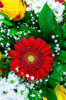 Gerbera chrysanthemum en roos