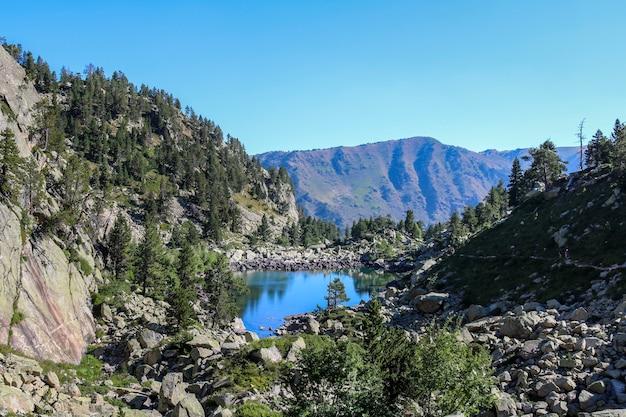Gerbervallei in de zomer, nationaal park van aigãƒâ¼estortes en estany van sant maurici.