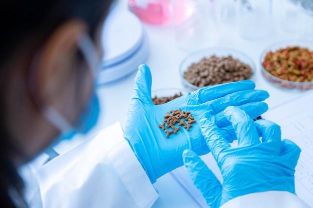 Gericht droog voedsel voor huisdieren bij de hand. kwaliteitscontrolepersoneel inspecteert de kwaliteit van droog voer voor huisdieren. kwaliteitscontroleproces van de huisdiervoedingsindustrie.
