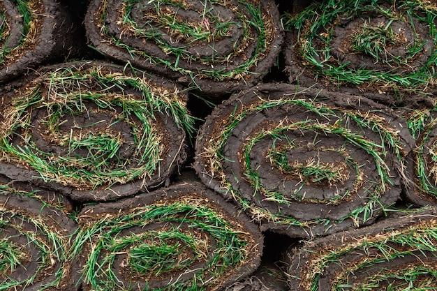 Gerolde groene graszoden als achtergrond