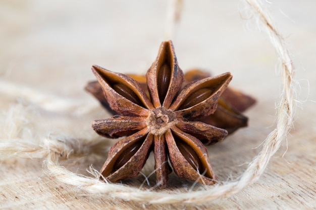 Geroosterde bruine mooie en zeer geurige steranijs, close-upfruit om te koken