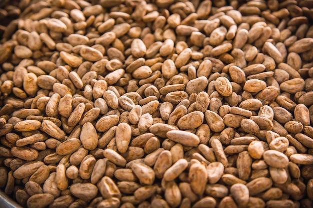 Geroosterde cacaobonen gemaakt van natuurlijke chocolade op roatan island. honduras