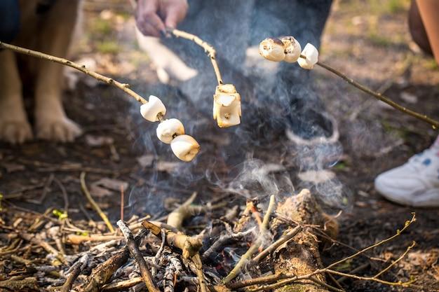 Geroosterde marshmallow in de natuur, close-up