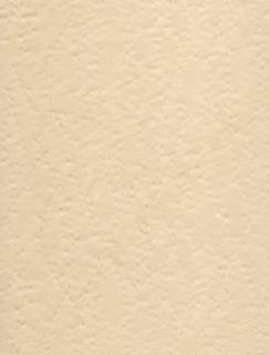 Gescand scrapbookpapier