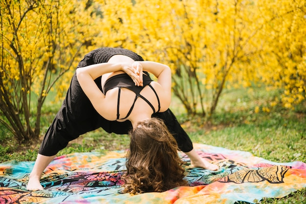 Geschiktheidsvrouw die yoga in ochtend uitvoeren bij park