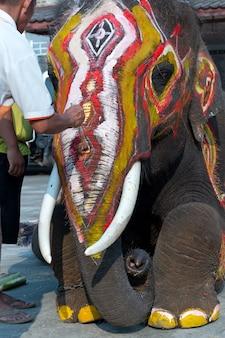 Geschilderde olifant op het festival van thailand