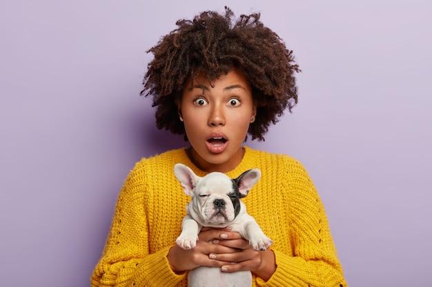 Geschokte vrouw draagt kleine puppy, verbaasd om te zien welke rotzooi het in huis heeft gedaan, moet na hond schoonmaken