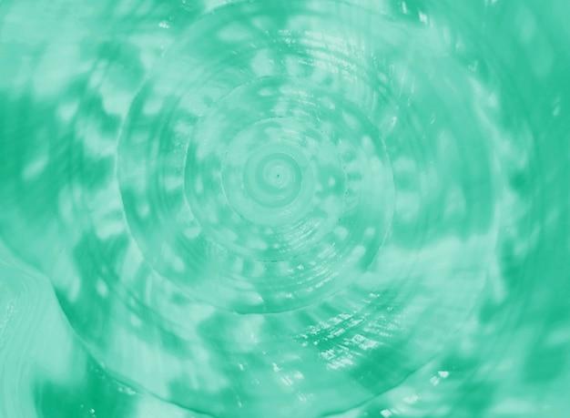 Gesloten omhoog spiraal en textuur van overzeese van koningshelm conch shell in munt groene kleur voor achtergrond