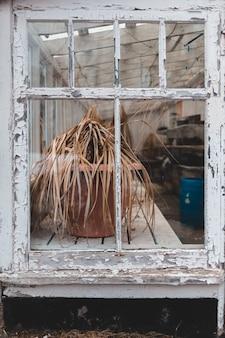 Gesloten raam met plantenbak