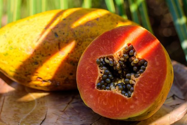 Gesneden papaja met granen. ecologische gezonde producten.