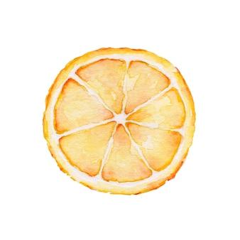 Gesneden stukje verse gele citroen aquarel geschilderd op wit