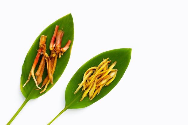 Gesneden vingerwortel op groene bladeren op witte achtergrond.