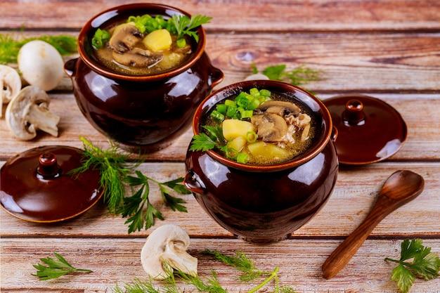 Gestoofde aardappel, vlees en champignons in aarden potten met deksel