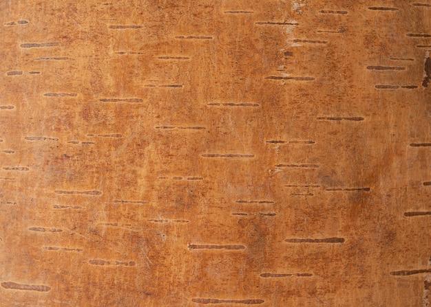 Getextureerde schors. close-up schors in hoge resolutie