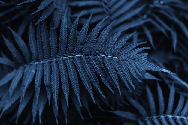 Getint tropisch blad in de kleur van het jaar 2020.