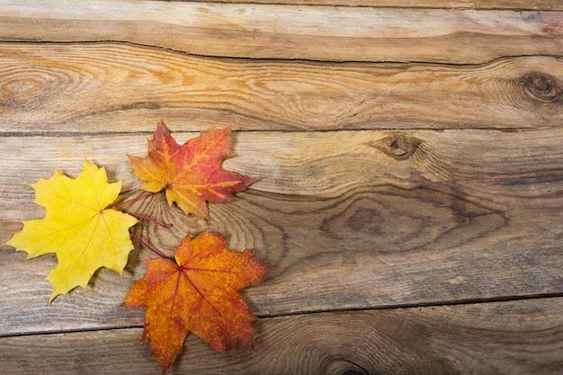 Gevallen esdoornbladeren op houten lijstachtergrond, copyspace