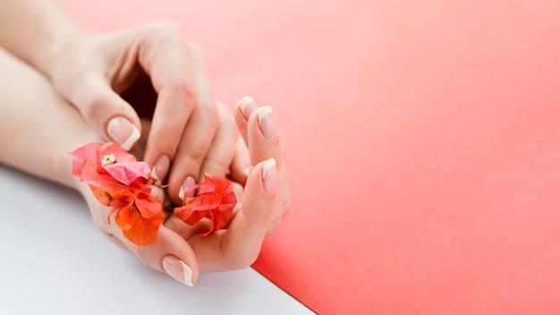 Gevoelige handen die rode bloemen met copyspace houden