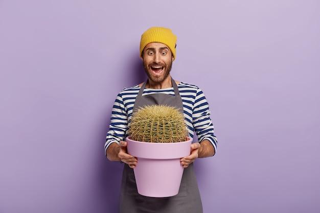Gevoelige mannelijke tuinman met geplante cactus in pot, kijkt verrassend naar grote kamerplant die na bemesting met liefde is gekweekt