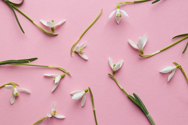 Gevoelige sneeuwklokje bloemen op een licht roze achtergrond. bloemenpatroon.