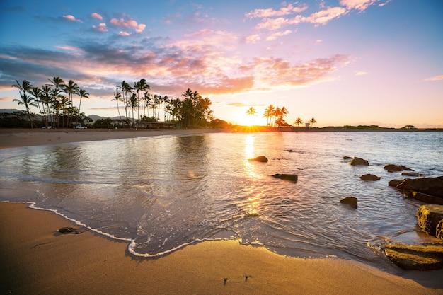 Geweldig hawaiiaans strand. golf in de oceaan bij zonsondergang of zonsopgang met surfer. golf met warme zonsondergangkleuren.