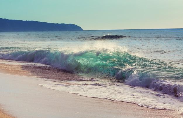 Geweldig hawaiiaans strand