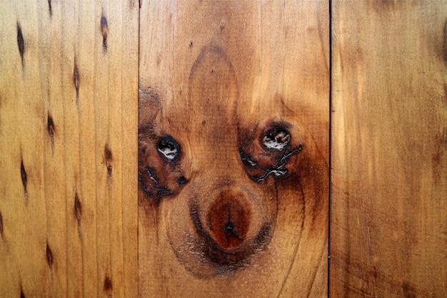 Geweldig puppy ziet eruit als een natuurlijk patroon van de houten buitenmuur in oasis town in noord-chili