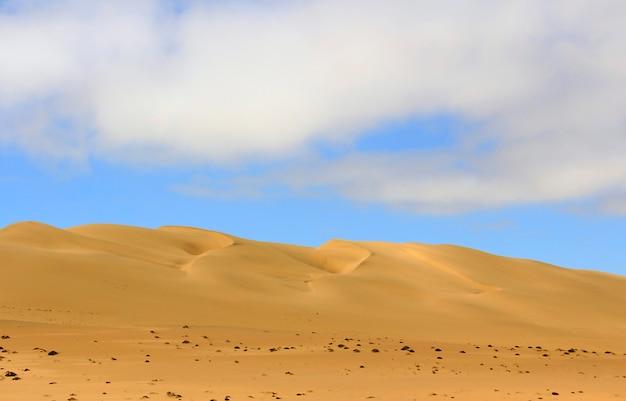 Geweldig uitzicht op het duin 7. namibië, afrika