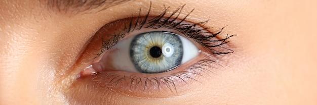Geweldig vrouwelijk blauw en groen gekleurd oogclose-up