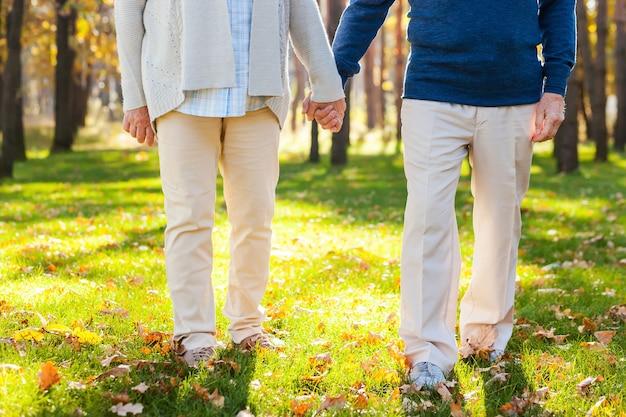 Geweldige tijd doorbrengen in het park. close-up van senior koppel hand in hand terwijl ze samen door het park wandelen
