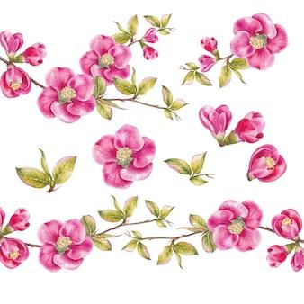 Geweldige verzameling lentebloemen.