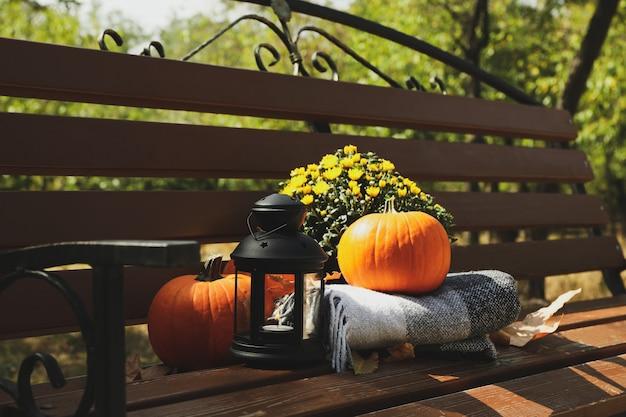 Gezellig herfstconcept buiten in het park