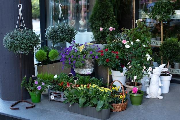 Gezellige straatdecoratie van bloemenwinkel. verschillende potplanten, zaailingen bij de ingang van de bloemistwinkel