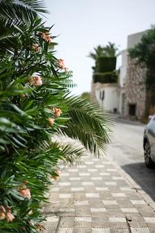 Gezellige straatjes van een klein stadje in het zuiden van spanje