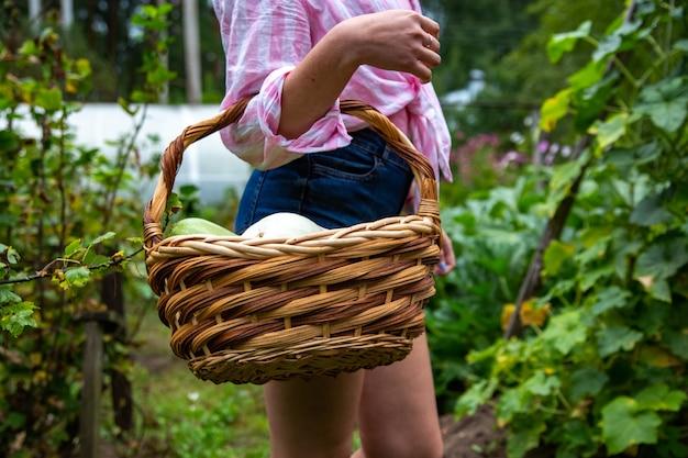 Gezichtsloos oman met mandje biologische groenten