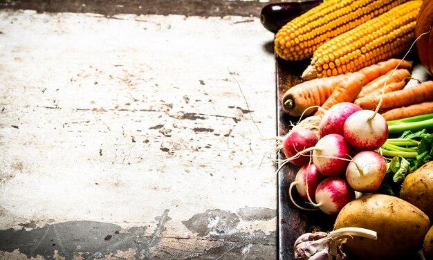 Gezond eten. verschillende rauwe groenten. op rustieke achtergrond