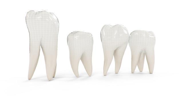 Gezonde beschermde tanden geïsoleerd op een witte achtergrond. aantal tanden.