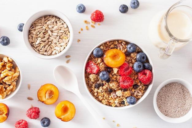 Gezonde muesli voor het ontbijt met bessen, noten, vegan melk