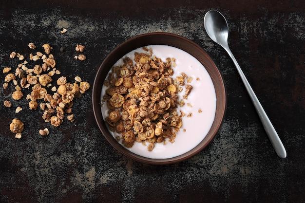 Gezonde ontbijtkom met verse yoghurt en granola. probiotica en gefermenteerde zuivelproducten. ontbijt met probiotica.
