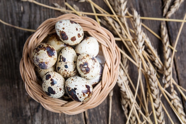 Gezonde voeding kwartelseieren in tarweoren.