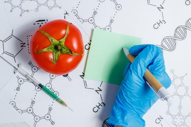 Ggo-wetenschapper maken notitie, groene vloeistof in spuit, rode tomaat