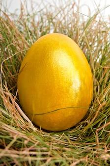 Glanzend geel paasei in het nest