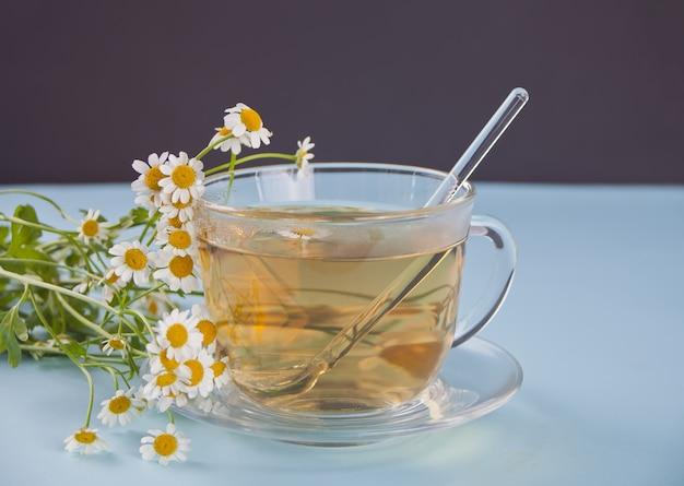 Glas gezonde kruidencamomille thee