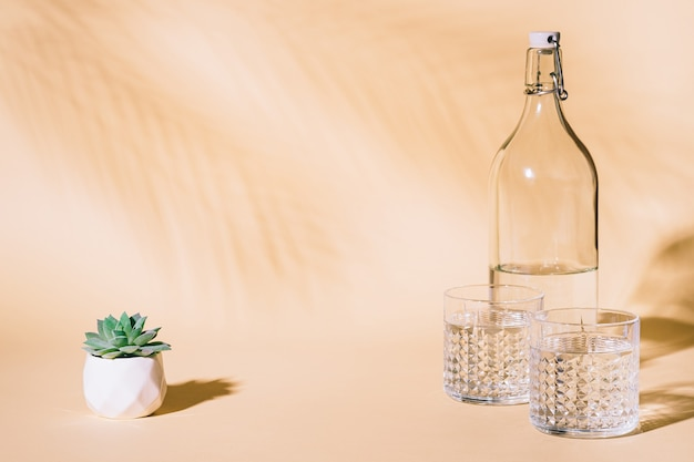 Glas water op pastel achtergrond met tropische palmbladschaduw en vetplant