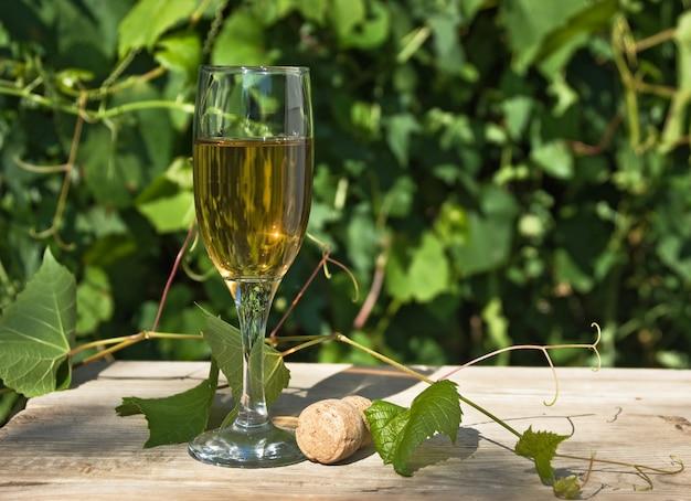 Glas wijn op de achtergrond van de wijngaard