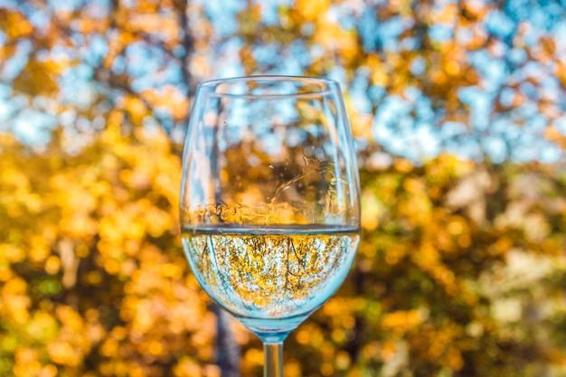 Glas witte wijn op de herfstachtergrond met gele bladeren